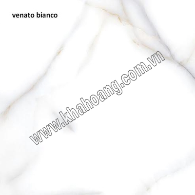 (60X60)VENNATO BIANCO 704